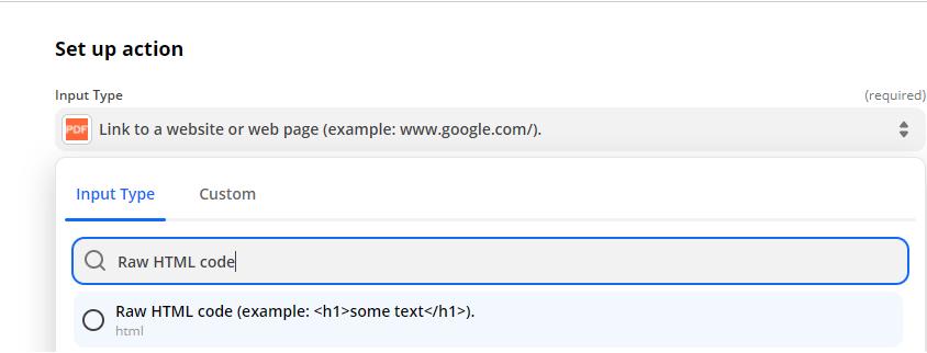 Choosing Raw HTML code as the input type